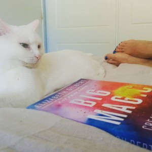 Purrfect end to a long weekend. My @sashi_cat and some big magic. #bigmagic #sydneyblogger #sydneywriter #elizabethgilbert #bigmagic #creative #creativelife
